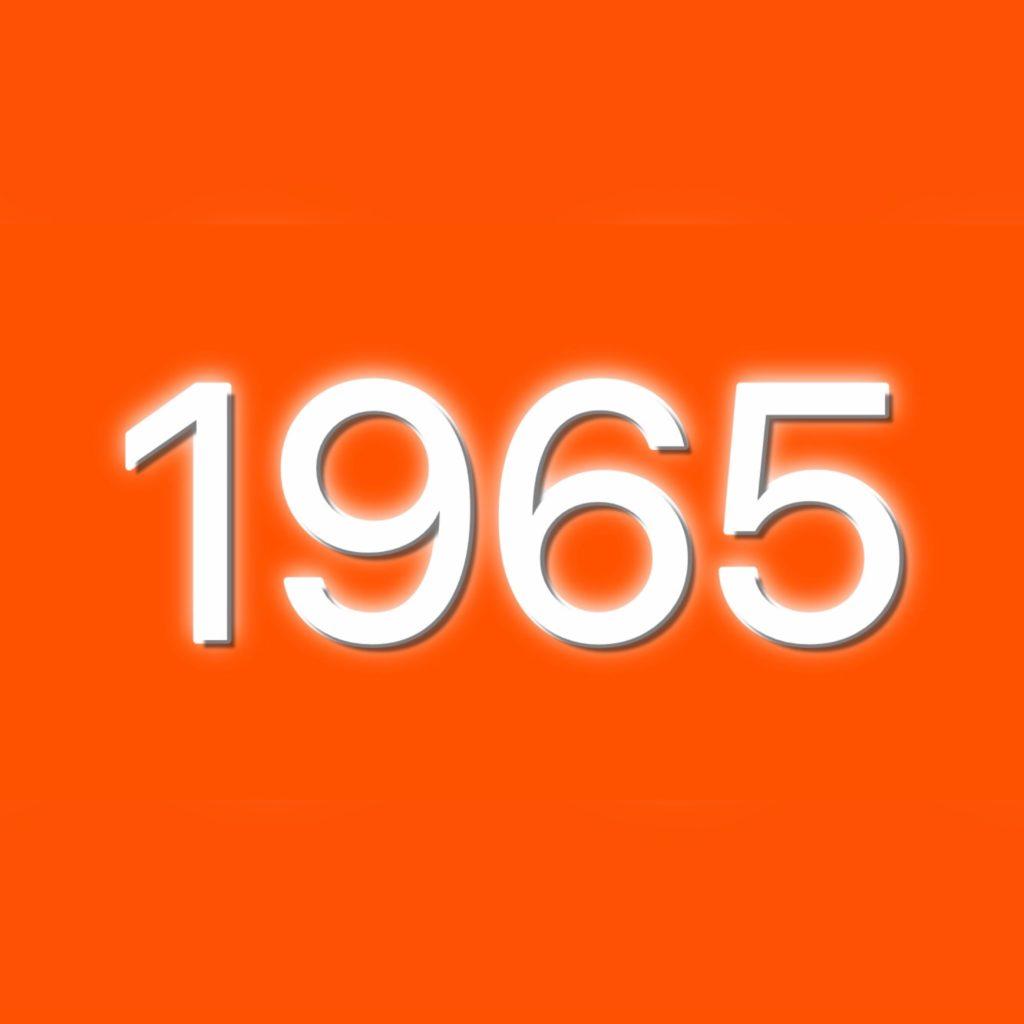 1965年(昭和40年)生まれの有名人/芸能人まとめ一覧 | 生年月日ナビ